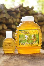 bee propolis supplement
